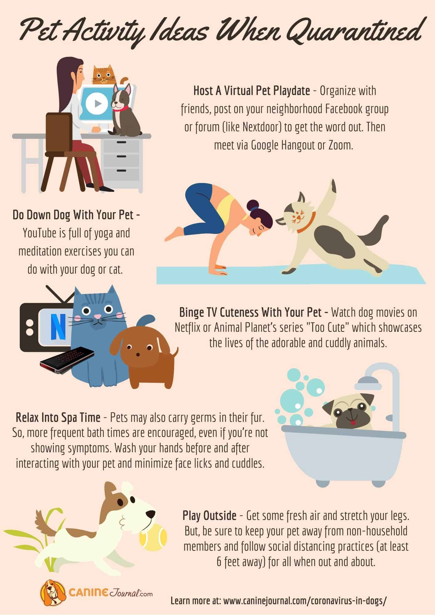 Pet Activity Ideas When Quarantined Graphic