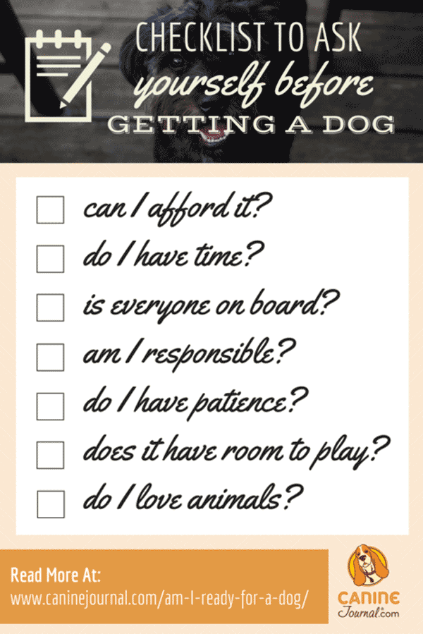 Am I Ready for a Dog Infographic