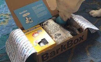 BarkBox and dog