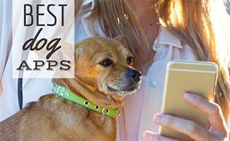 Girl on phone holding dog (caption: Best Dog Apps)