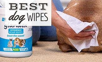 Dog's butt being wiped (caption: Best Dog Wipes)