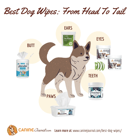 Best Dog Wipes