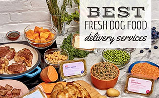 Ollie dog food beside fresh ingredients (caption: Best Fresh Dog Food Delivery Services)