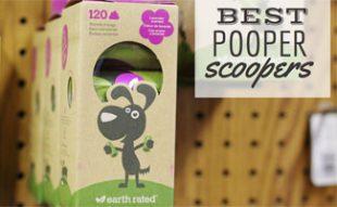 Best Pooper Scooper