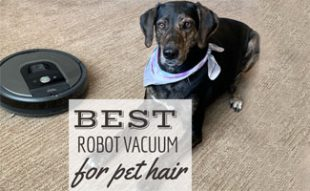 Dog sitting on floor next to Roomba (Caption: Best Robot Vacuum For Pet Hair)