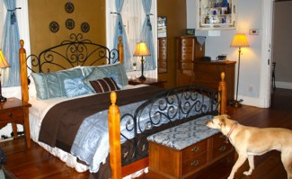 Dog Tour of Blake House Inn in Asheville, NC