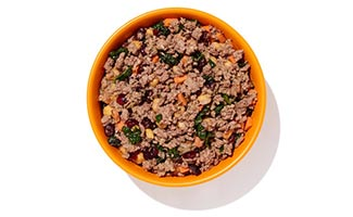 Bowl of Ollie dog food