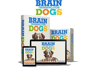 Brain Training For Dogs Courses