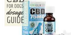 King Kalm DBD oil (caption: CBD Dosage For Dogs)