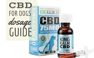 King Kalm CBD oil (text in image: CBD For Dogs Dosage Guide)