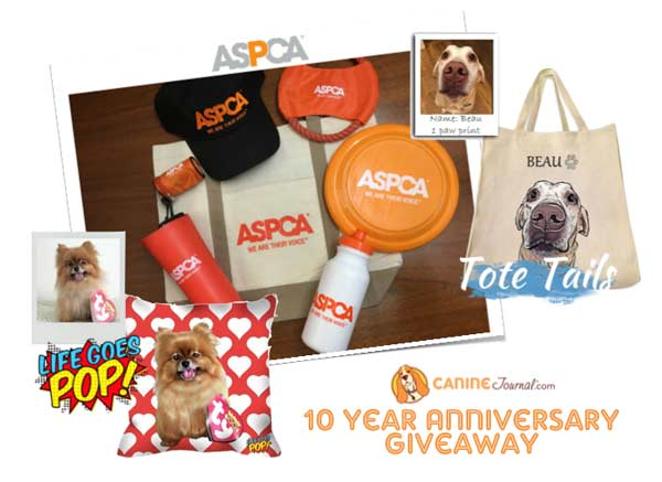 Canine Journal 10 year anniversary prizes