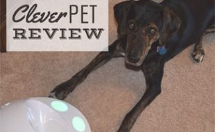Sally with CleverPet hub