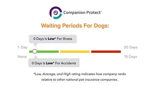 Companion Protect Pet Insurance waiting periods
