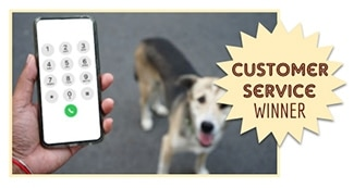 Person holding phone next to dog: Customer Service & Reputation Winner