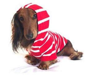 Django Brand Red & White Stripe Hoodie