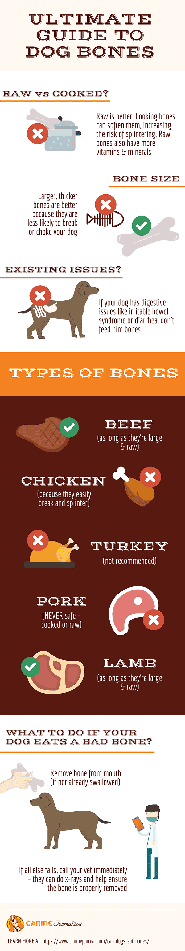 Can Dogs Eat Bones Infographic