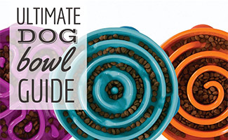 3 slow dog food bowls (caption: Ultimate Dog Bowl Guide)