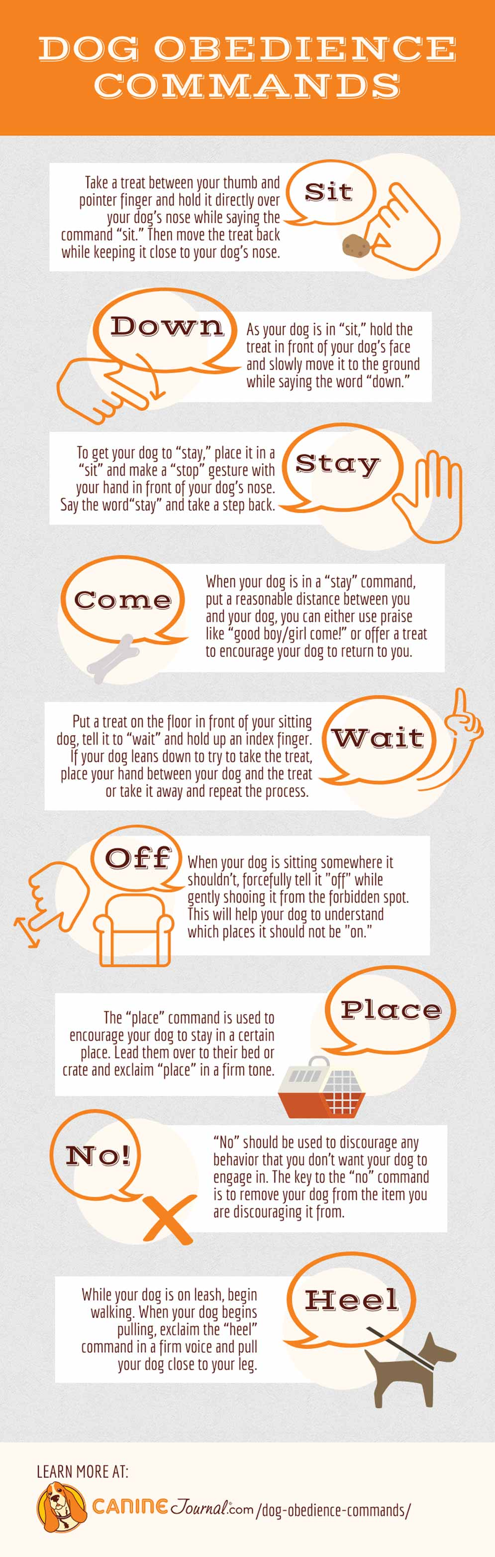 Dog Training Commands Infographic