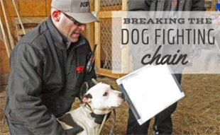 Matt Bershadker at dog fighting shelter