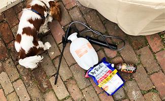 Dog-friendly weed killer
