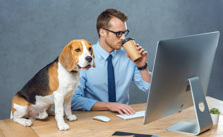 A person dressed in a blue button-up shirt and blue tie working at a desktop computer while a dog sits on the desk next to them.