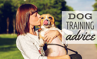 Woman holding dog kissing face (caption: Dog Training Advice)