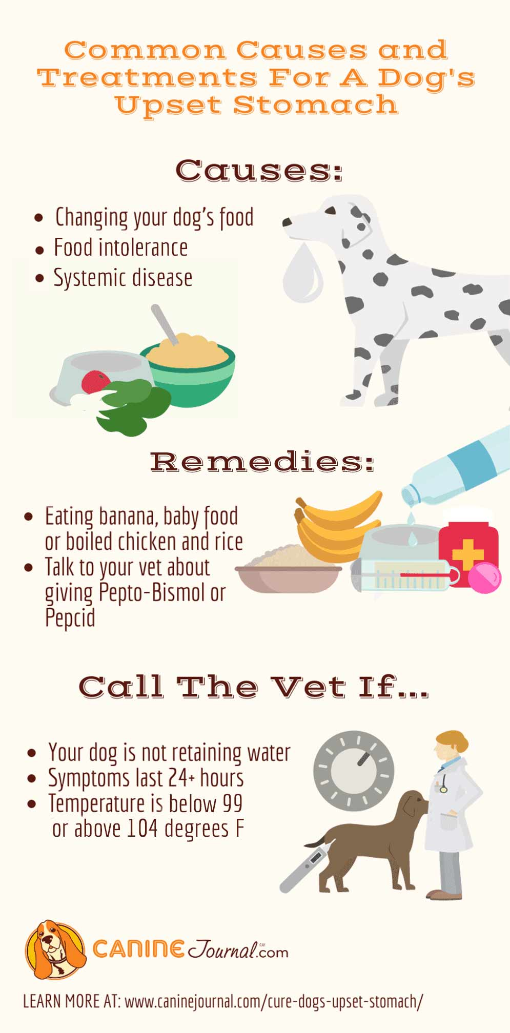 Common Causes and Treatments For A Dog's Upset Stomach Infographic