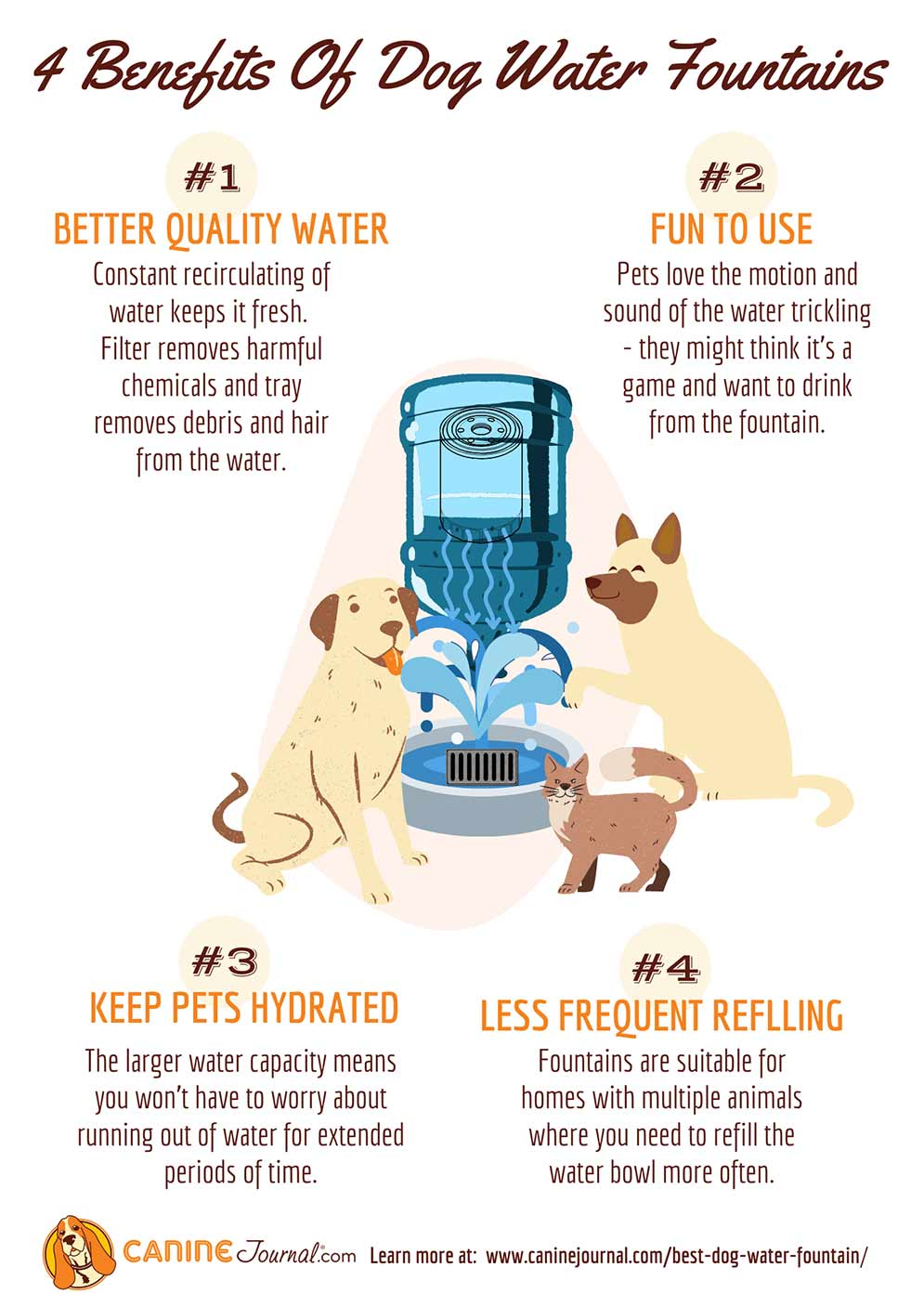 Dog Water Fountain Benefits Infographic