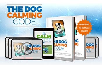 Doggy Dan's famous Dog Calming Code
