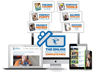 Doggy Dan The Online Dog Trainer courses
