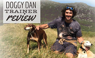 Doggy Dan with 2 dogs (caption: Doggy Dan's Online Dog Training Course Review)