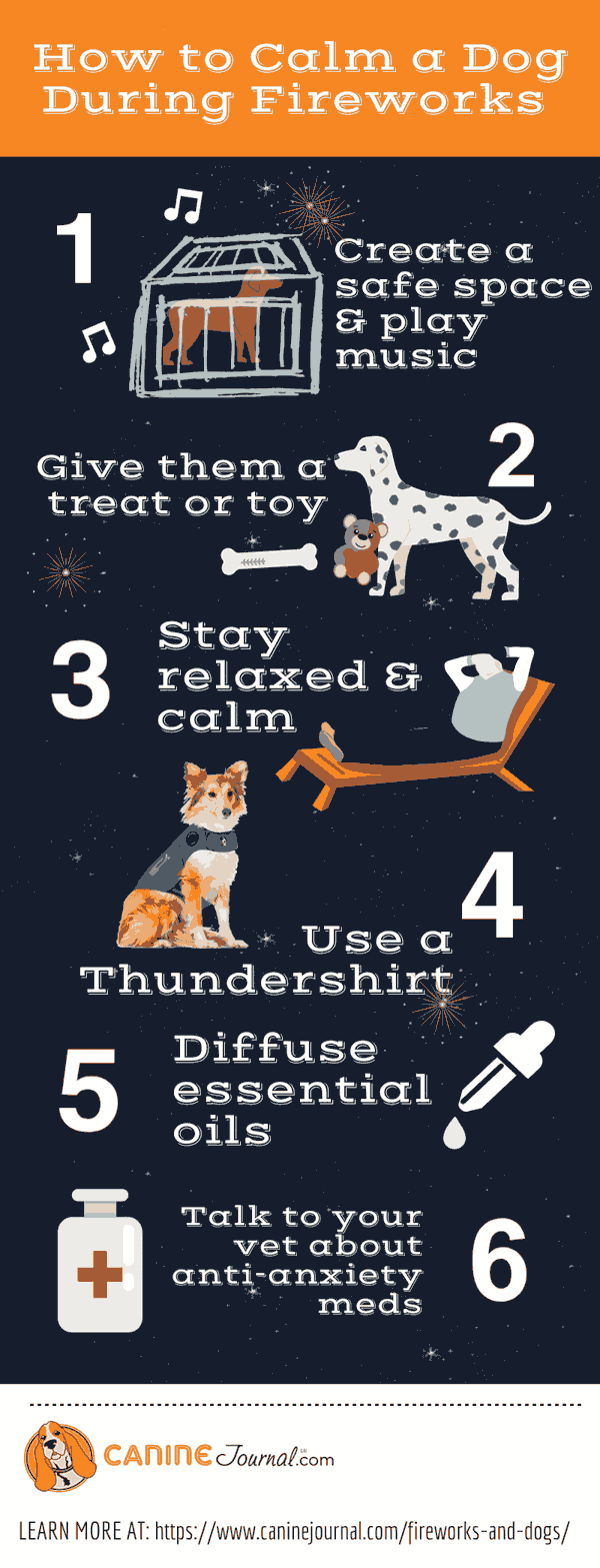 How to Keep Dog Calm During Fireworks