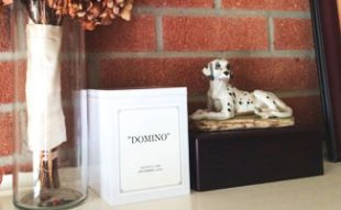 Dog cremation ashes on mantel