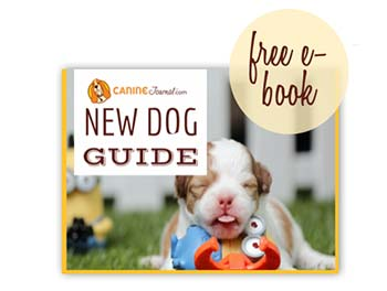 Image Of New Dog Guide With Free E-Book