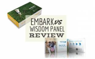 Embark Dog DNA vs Wisdom Panel boxes