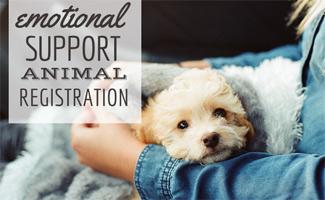 Legitimate Emotional Support Animal Registration Caninejournalcom