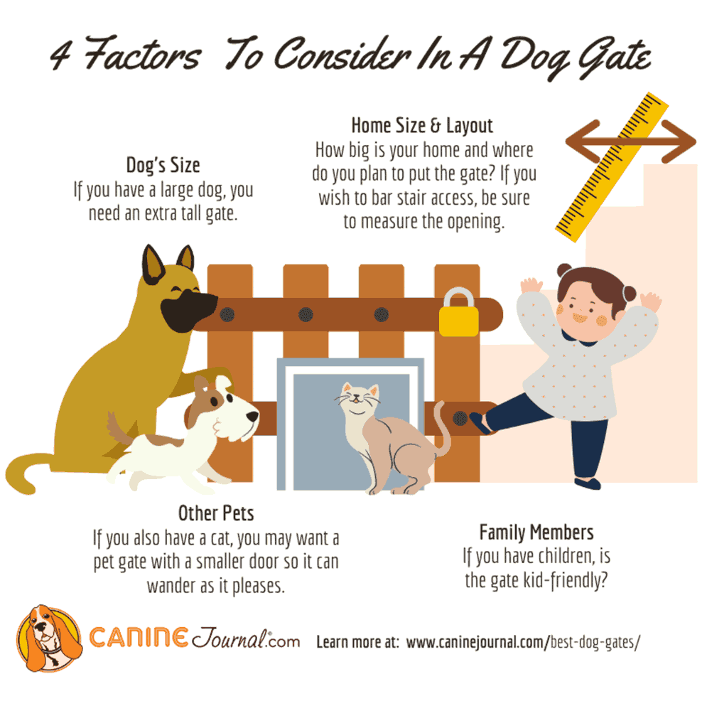 4 Factors To Consider In A Dog Gate Infographic