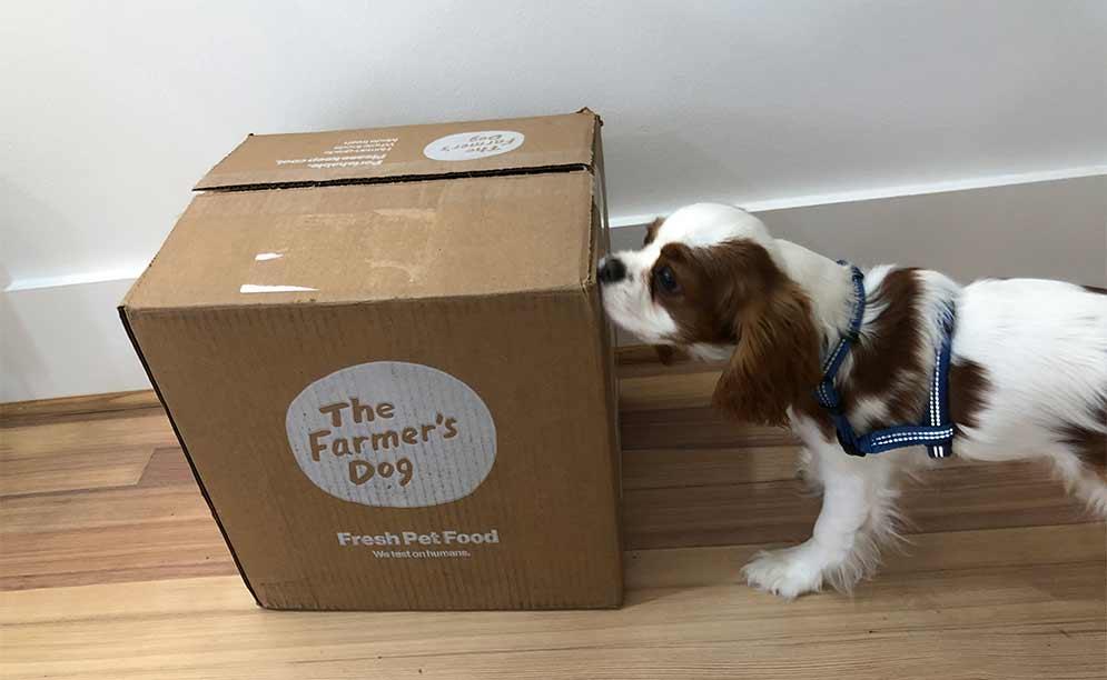 Farmer's Dog Box