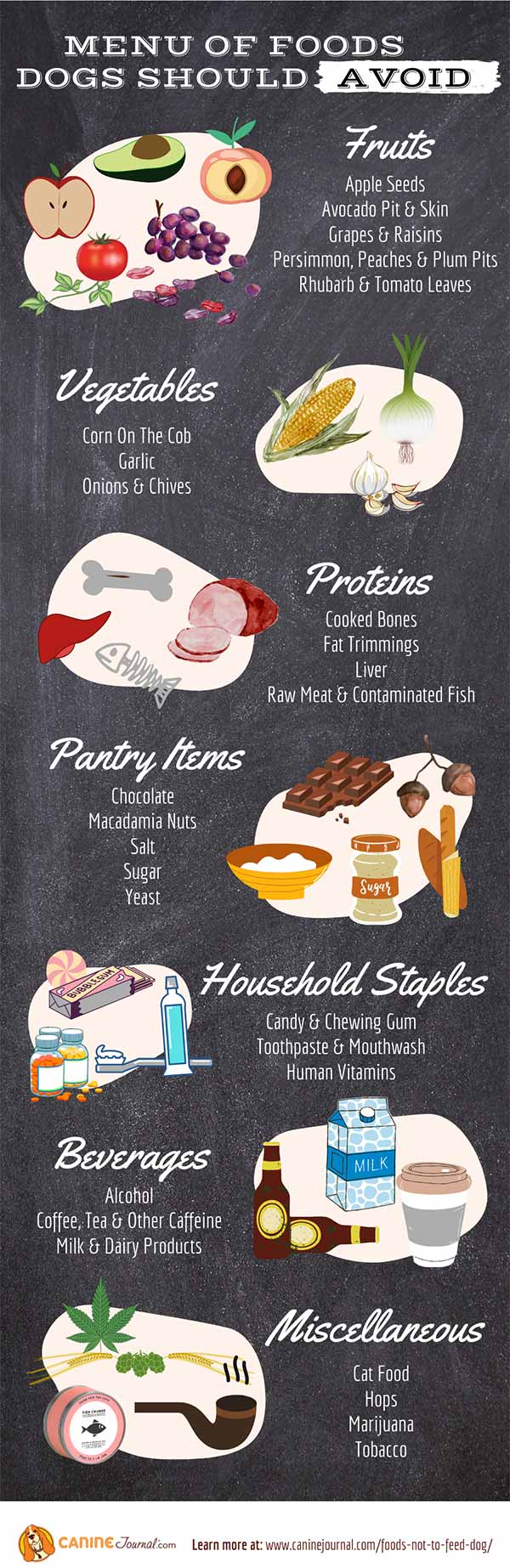 Infographic: The Menu Of Foods Not To Feed Dogs