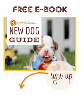 Canine Journal E-Book Signup
