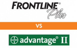 Frontline vs Advantage