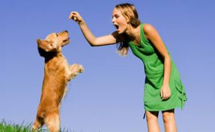 Girl with Dog Jumping
