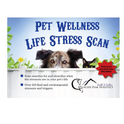 Glacier Peak Holistics Pet Wellness Life Stress Scan box