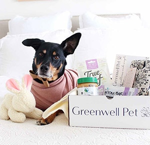 Greenwell Dog and Subscription box