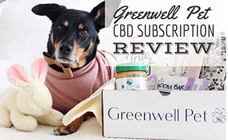 Dog next to Greenwell Pet CBD Box (caption: Greenwell Pet CBD Subscription Review)