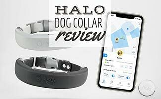 2 Halo Dog Collars next to iPhone app (Caption: Halo Collar Review)