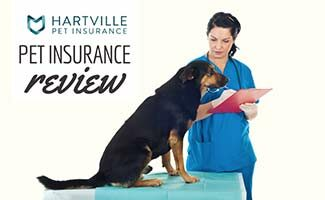 Woman vet with dog and clipboard (caption: Hartville Pet Insurance Review)