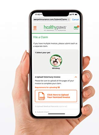Healthy Paws app on iPhone