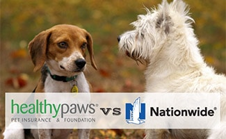 Two dogs looking at each other (caption: Healthy Paws vs Nationwide)
