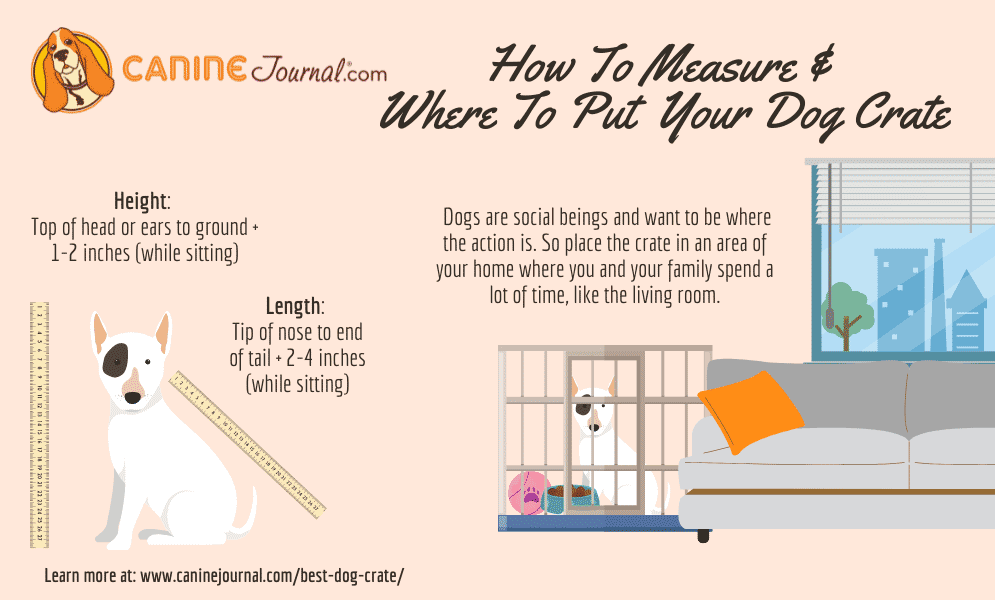 How To Measure & Where To Put Your Dog Crate Infographic